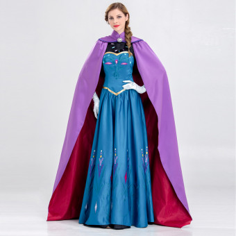 Frozen costume Ladies frozen Elsa costume for adult